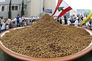 Guinness record for biggest Falafel by Lebanon 2010